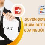 Quyen Don Phuong Chap Dut Hop Dong Lao Dong