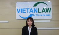 Bà Bùi Thúy Ngần: Chuyên viên tư vấn pháp luật