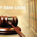 Luat Hanh Chinh